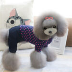 Small Dog Clothes 06-0213